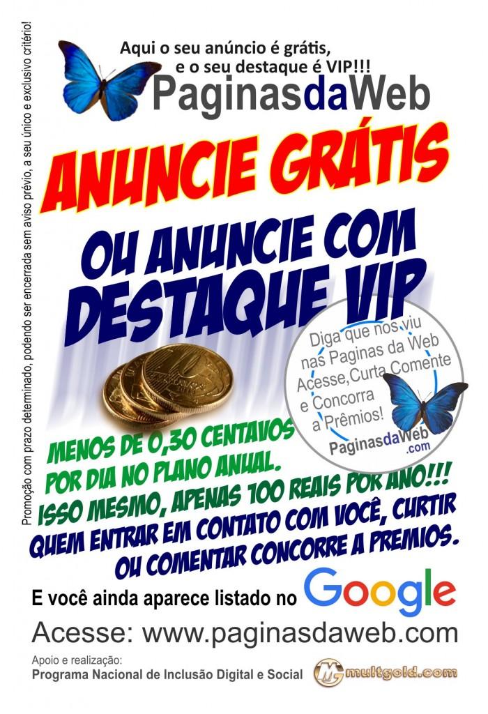 paginas-da-web-frente-publicidade-700x1024